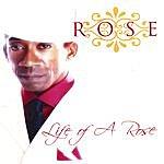 Rose Life Of A Rose