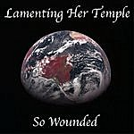 Richard Kaplan Lamenting Her Temple So Wounded - Single