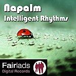 Napalm Intelligent Rhythms