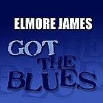 Elmore James Got The Blues