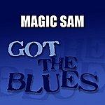 Magic Sam Got The Blues