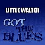 Little Walter Got The Blues