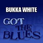 Bukka White Got The Blues