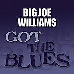 Big Joe Williams Got The Blues