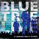 Blue Tree Bluetree Live At Exchange Church Belfast