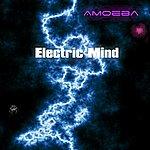 Amoeba Electric Mind