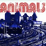 The Animals Animals - Ep