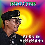 Rooster Born In Mississippi