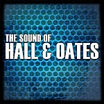 Hall & Oates The Sound Of Hall & Oates