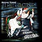 Bernie Torme White Trash Guitar
