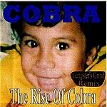 Cobra The Rise Of Cobra (Gangster's Grind Remix)