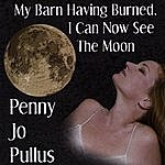 Penny Jo Pullus My Barn Having Burned I Can Now See The Moon