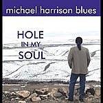 Michael Harrison Hole In My Soul
