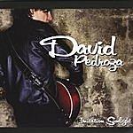 David Pedroza Imitation Sunlight