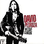 David Pedroza In Love With The Moon