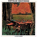Neville Brothers Fiyo On The Bayou