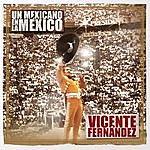 Vicente Fernández Un Mexicano En La México - Vicente Fernández