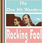 One Hit Wonders Rocking Fool