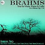 Bamberg Trio Brahms: Trio For Viola, Piano & Cello In A Minor Op. 114