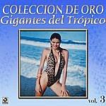 Varios Gigantes Del Tropico Vol.3