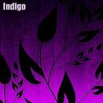 Indigo Free