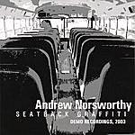 Andrew Norsworthy Seatback Graffiti (Demo Recordings, 2003)
