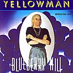 Yellowman Blueberry Hill