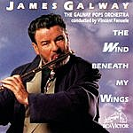 James Galway The Wind Beneath My Wings