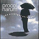 Procol Harum The Prodigal Stranger