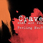 The Crave What Are You Feeling Now?