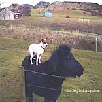 The One The Dog And Pony Show
