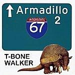 T-Bone Walker Armadillo 2
