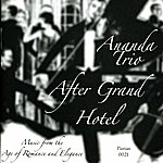Ananda After Grand Hotel: Music From The Age Of Romance And Elegance
