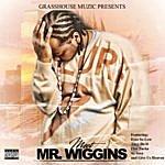 Block Meet Mr Wiggins