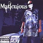Maticulous Maticulous