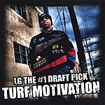 LG Turf Motivation