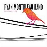 Ryan Montbleau Heavy On The Vine