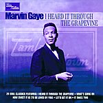 Marvin Gaye I Heard It Through The Grapevine