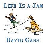 David Gans Life Is A Jam