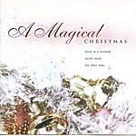 Scarlet Rivera A Magical Christmas