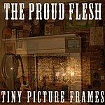 Proud Flesh Tiny Picture Frames