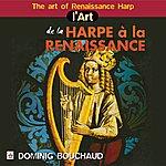 Dominig Bouchaud L'art De La Harpe À La Renaissance