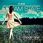 Fluid Dream State