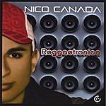 Nico Canada Reggaetronica