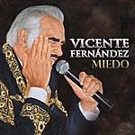 Vicente Fernández Miedo