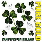 Inishkea Pure Gold Pan Pipes Of Ireland