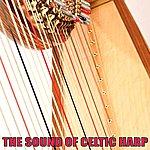 Claire Hamilton The Sound Of Celtic Harp