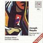 Emil Klein Haydn: Divertimenti Vol. 1