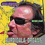 Phil George Burdigala Dreams