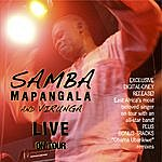 Samba Mapangala & Orchestra Virunga Live On Tour
